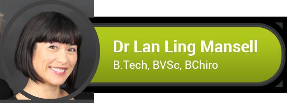 Chiropractor - Dr Lan Ling
