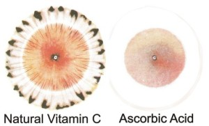 synthetic vs whole food vitamins - ascorbic
