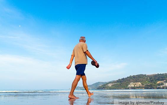 slow down brain aging
