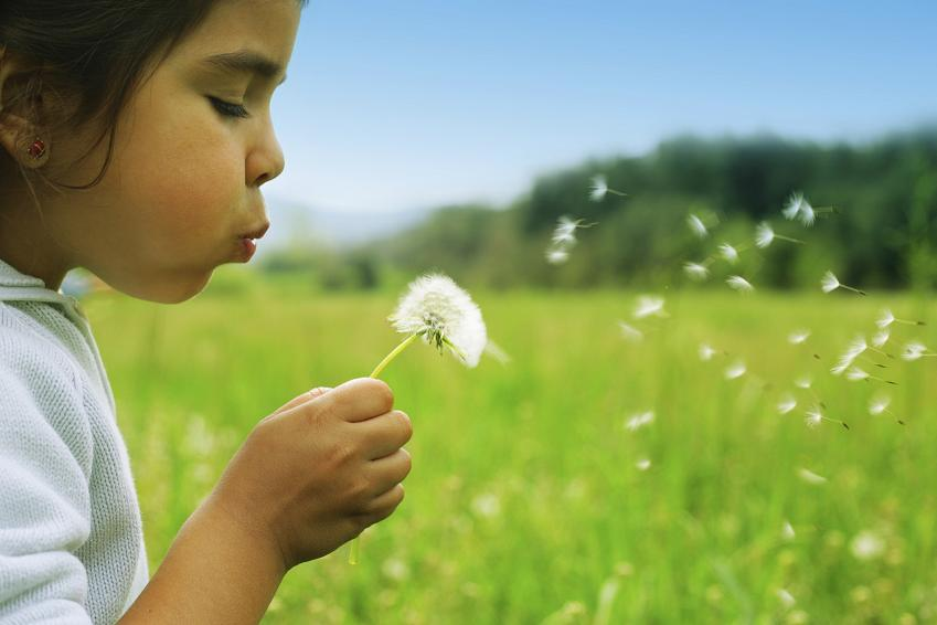 Allergies linked to poor nerve function